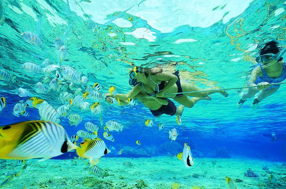 Pompano Beach Snorkeling